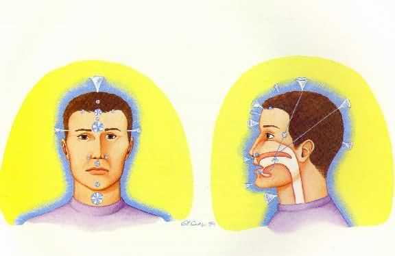 chacras da cabeça