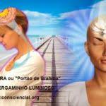 A MEDITAÇÃO TRANSPESSOAL CONSCIENCIAL