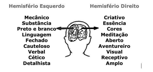 hemisferios cerebrais