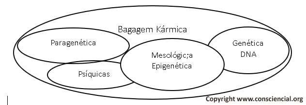 Bagagens do carma - conteúdos cármicos