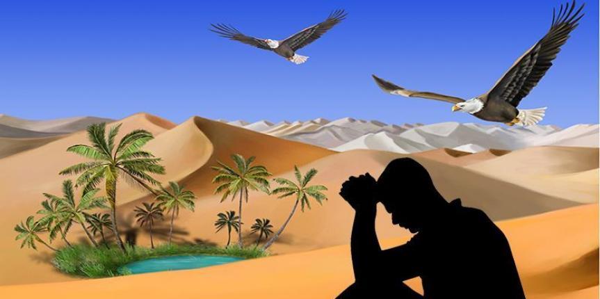 Oásis no deserto da consciência